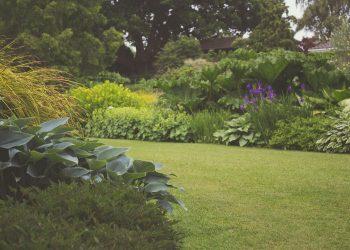 Gartengestaltung-Prima-Verde-Wien-Rasen-Rollrasen-Rasenneuanlage