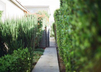 Gartengestaltung-Weg-Platten-Wegebau-Prima-Verde-Gartengestaltung-Peter-Dimany-Wien-Floridsdorf