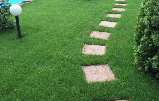 Wegebau-Gartenweg-Wege-Prima-Verde-Gartengestaltung-Peter-Dimany-Wien-Floridsdorf