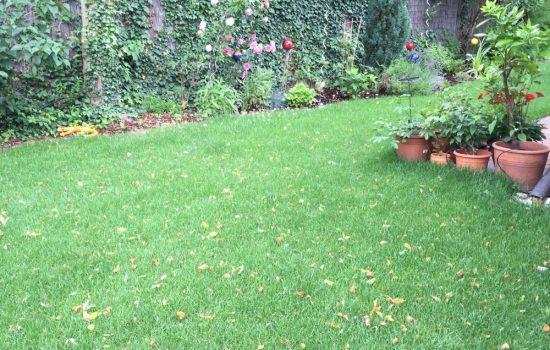 Wege-Prima-Verde-Gartengestaltung-Peter-Dimany-Wien-Floridsdorf