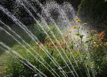 Prima-Verde-Gartengestaltung-Gartenbewässerung-Wien-21-Floridsdorf