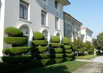 Prima-Verde-Gartengestaltung-Strauch-Schnitt-Baum-Schnitt-Wien
