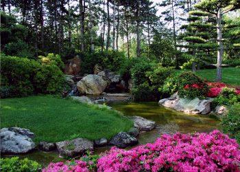 Prima-Verde-Gartengestaltung-Wien-Ideen-japanischer-Garten