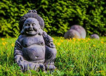 Prima-Verde-Peter-Dimany-Gartengestaltung-Wien-japanischer Garten
