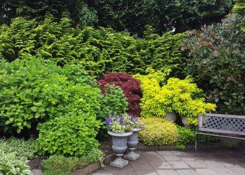 Terrassengestaltung-Terrasse-Prima-Verde-Gartengestaltung-Peter-Dimany-Wien-Floridsdorf