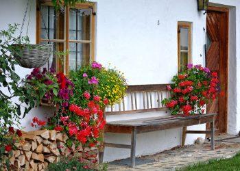 romantischer-Garten-Prima-Verde-Gartengestaltung-Peter-Dimany-Wien-Floridsdorf